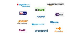 Bezahlsysteme im Onlinehandel